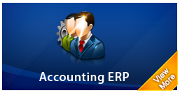 accounting erp system